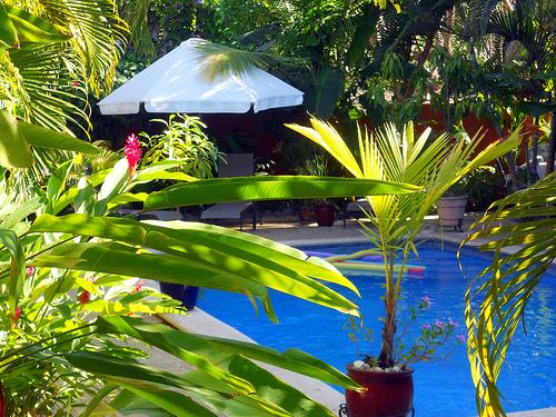 Hotel Conchal – Guanacaste Costa Rica Conchal beach | Conchal beach